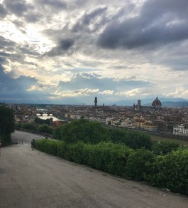 florence overview 2